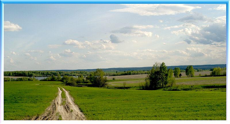 """фото """"Деревенская дорога."""" метки: пейзаж, лето"""