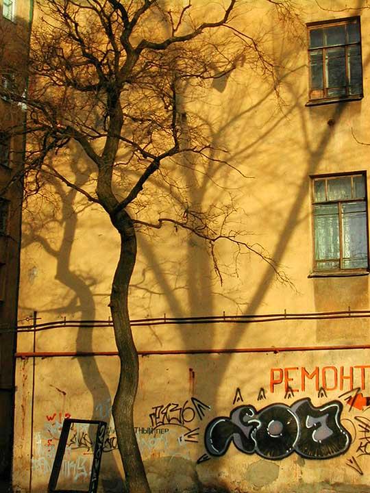 "фото ""Про кривое дерево"" метки: архитектура, пейзаж,"