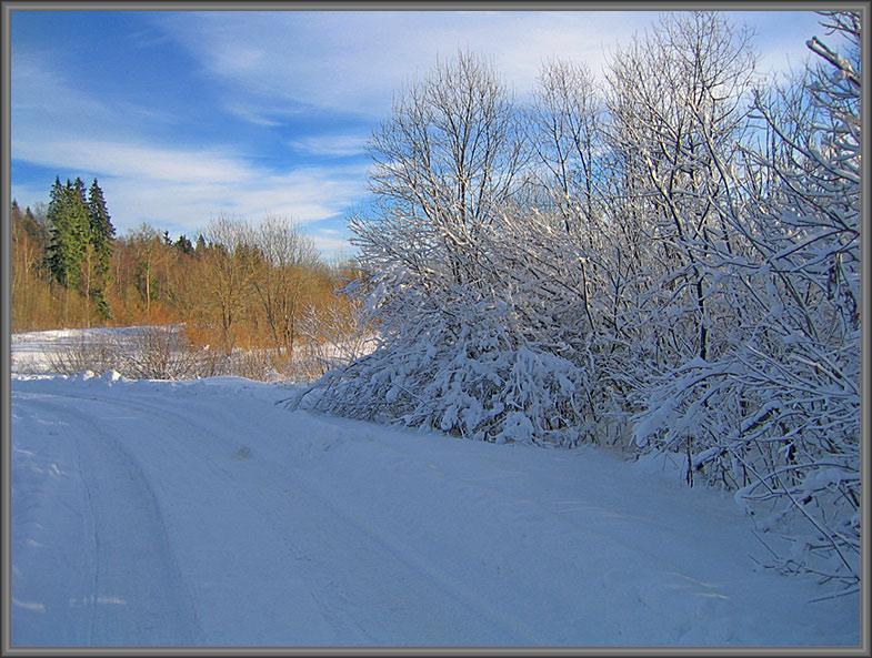 """фото """"Зимняя дорога"""" метки: пейзаж, зима, лес"""