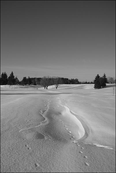 "фото ""Свет и тень (5)"" метки: черно-белые, пейзаж, зима"