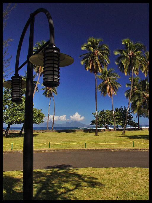 "фото ""palm trees"" метки: пейзаж, весна, вода"