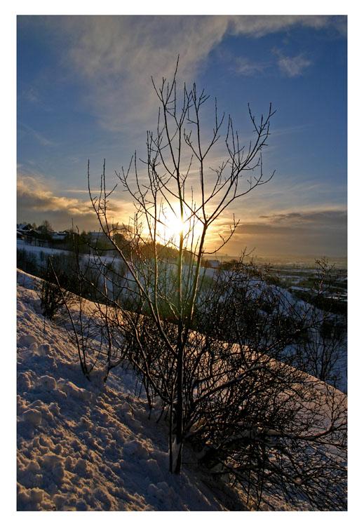 """фото """"Winter"""" метки: пейзаж, зима"""