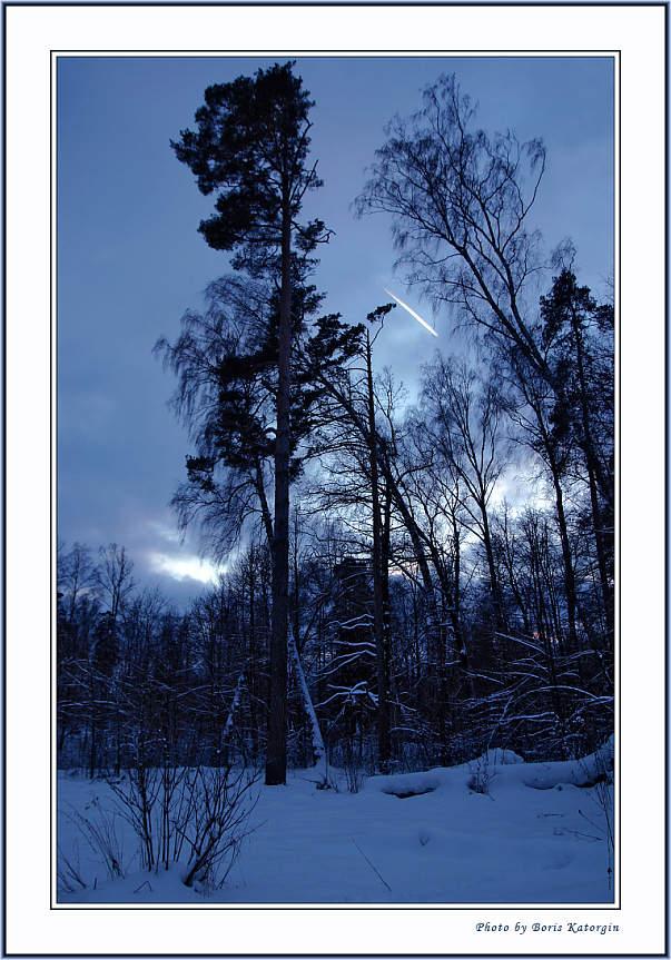 """фото """"Падение метеорита"""" метки: пейзаж, зима, лес"""