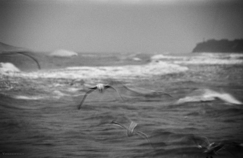 """фото """"Чувства (серия """"Солярис"""")"""" метки: природа,"""