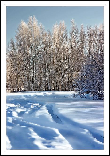 """фото """"Просто зима"""" метки: пейзаж, зима"""