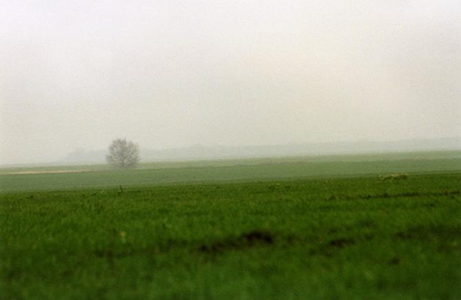 """фото """"После дождя"""" метки: пейзаж, осень"""