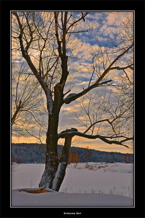 """фото """"Evening Sky"""" метки: разное, пейзаж, зима"""