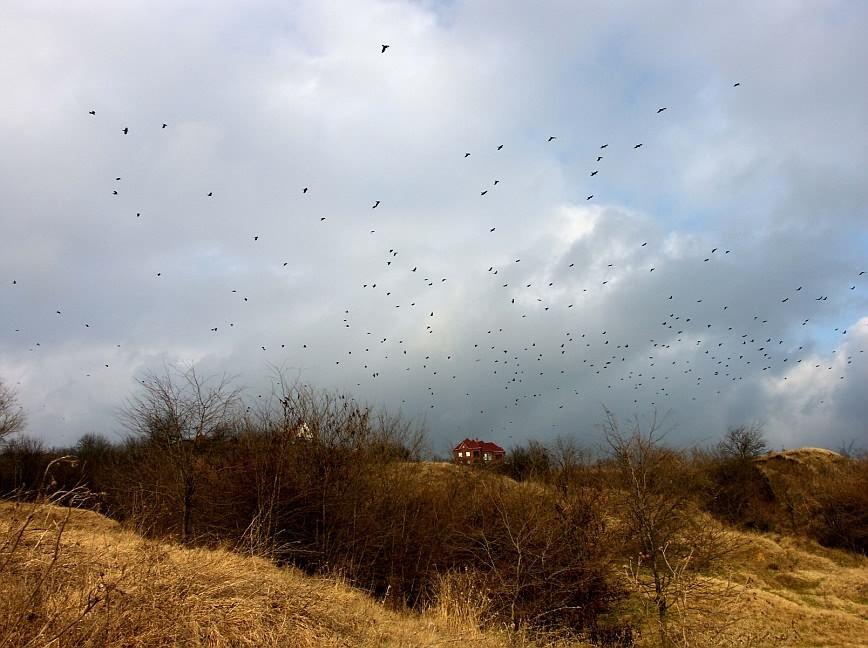 """фото """"Домик с приведениями"""" метки: пейзаж, облака"""