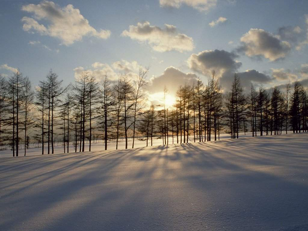 "фото ""Neige"" метки: пейзаж, зима"