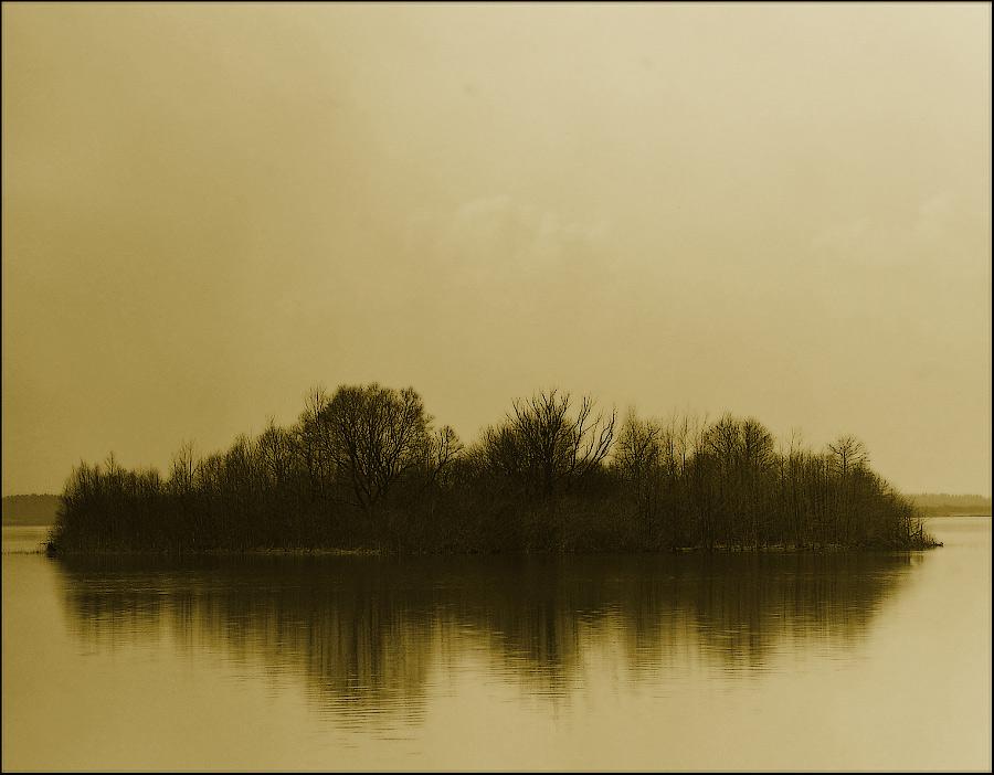 """фото """"*****"""" метки: пейзаж, вода, лес"""