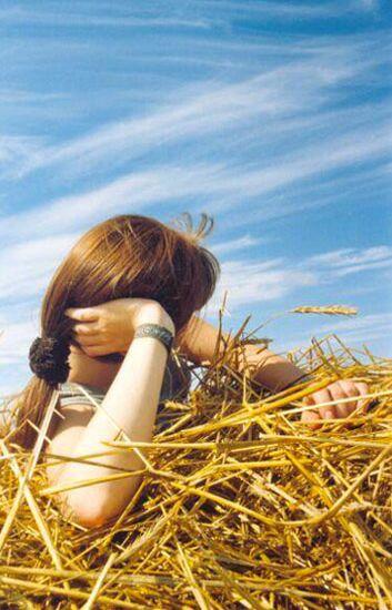 """фото """"MySky"""" метки: природа,"""