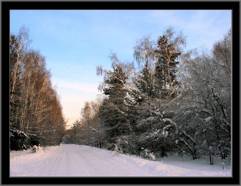 """фото """"Зимняя дорога"""" метки: пейзаж, зима"""