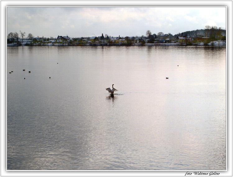 "фото ""Деревенский пейзаж."" метки: пейзаж, вода, зима"