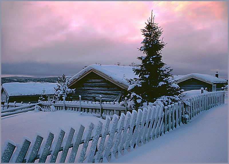 """фото """"Early morning."""" метки: пейзаж, зима"""