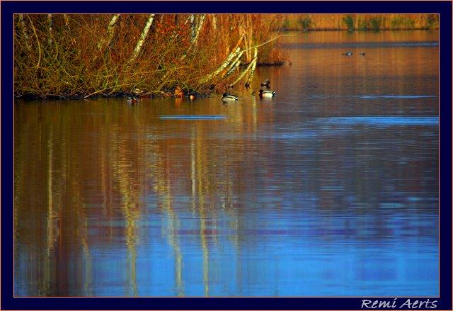 "фото ""in the morning"" метки: пейзаж, вода, облака"