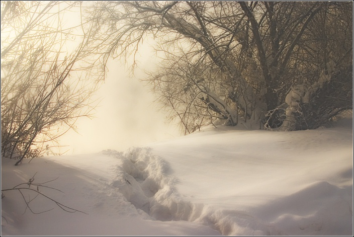 "фото ""Прогулки в тумане"" метки: пейзаж, зима"