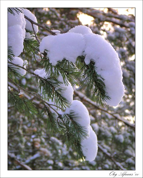 "фото ""Без названия"" метки: пейзаж, природа, зима"