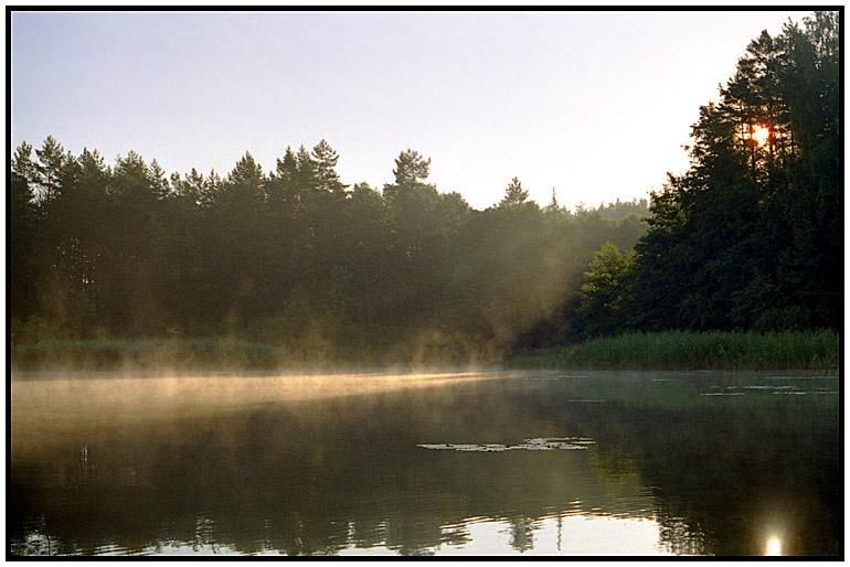 """фото """"Летнее утро"""" метки: пейзаж, лето"""