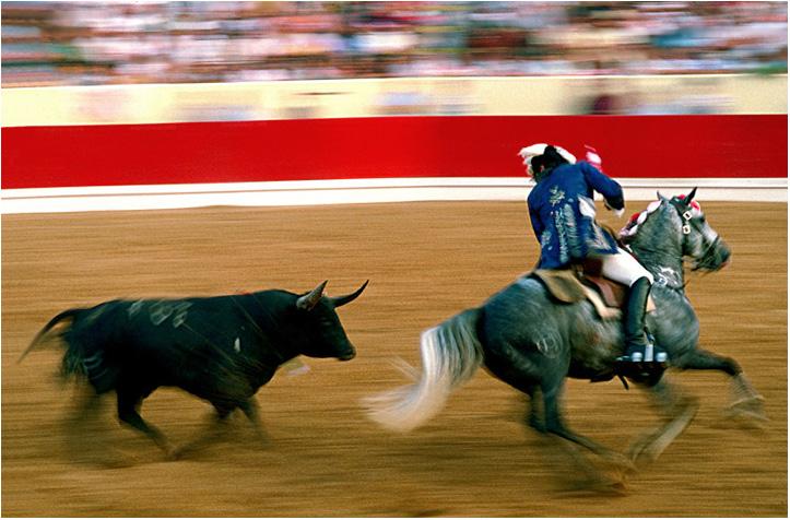 """фото """"Portuguese bullfight"""" метки: разное, репортаж,"""