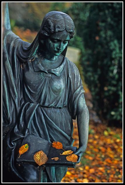 "фото ""Autumn"" метки: натюрморт,"