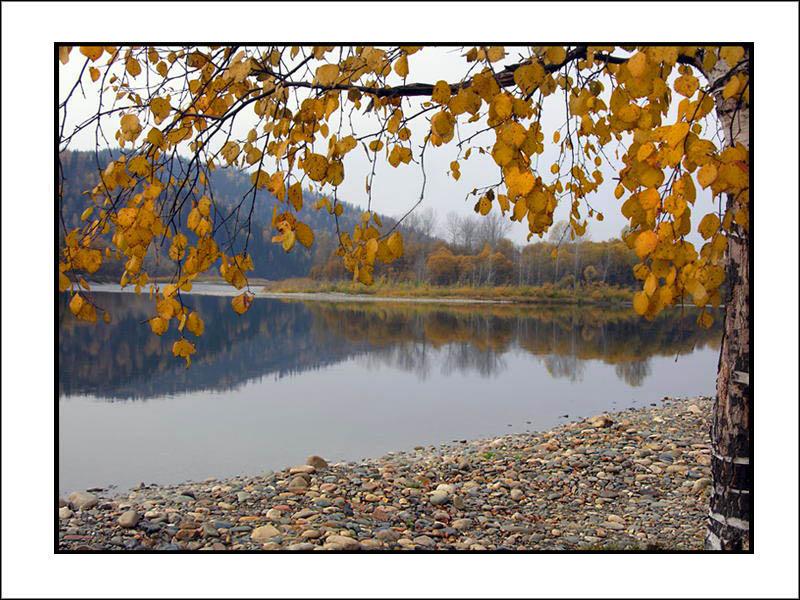 """фото """"Прозрачная осень."""" метки: пейзаж, осень"""