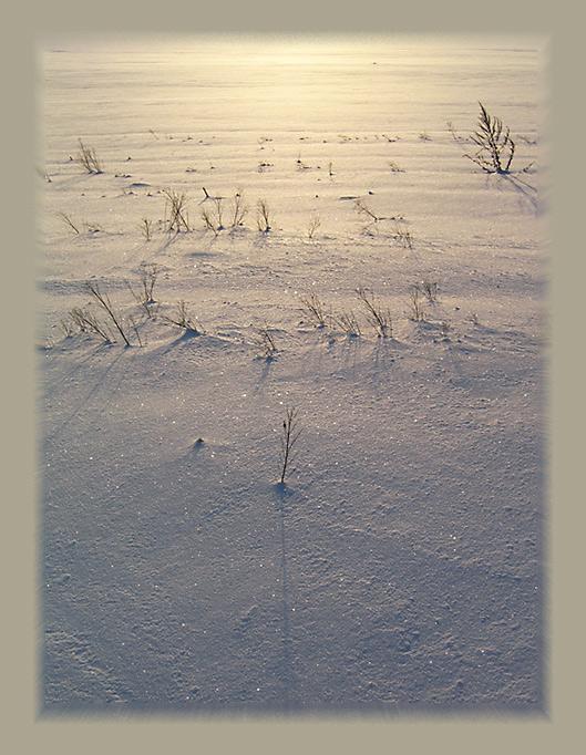 """фото """"Дорога на закат"""" метки: пейзаж, закат, зима"""
