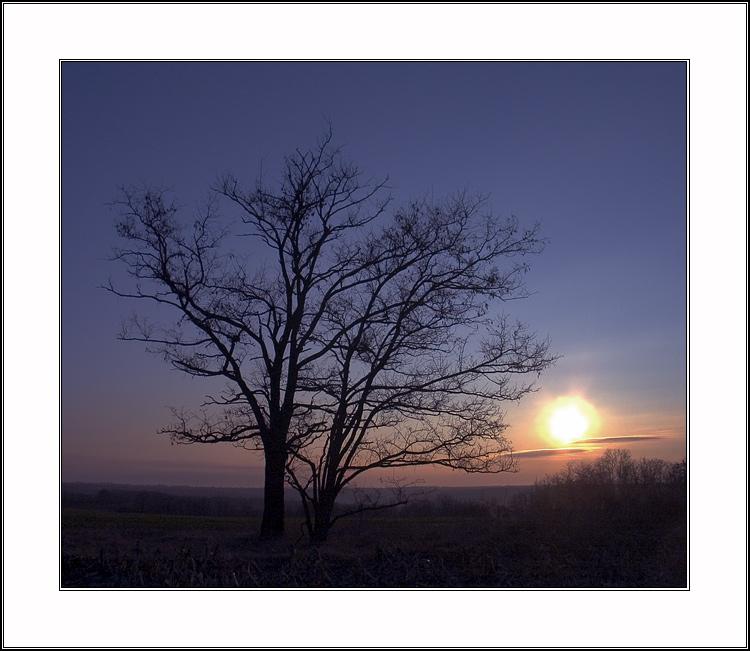 """фото """"силуэты #3:  симфония в синем"""" метки: пейзаж, природа,"""