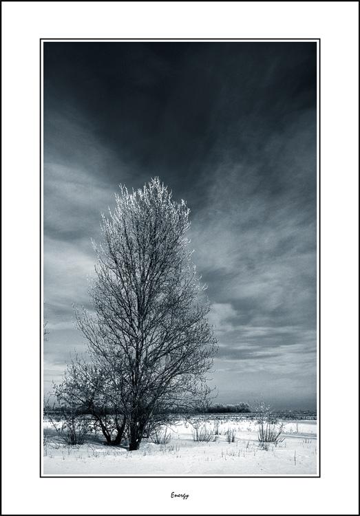 "фото ""Energy"" метки: черно-белые, пейзаж, зима"