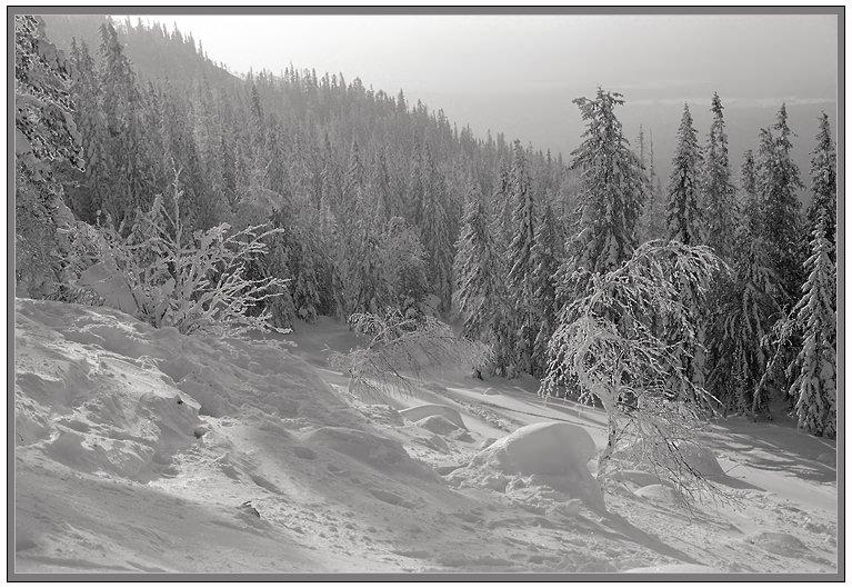 """фото """"На россыпи IV"""" метки: пейзаж, горы, зима"""
