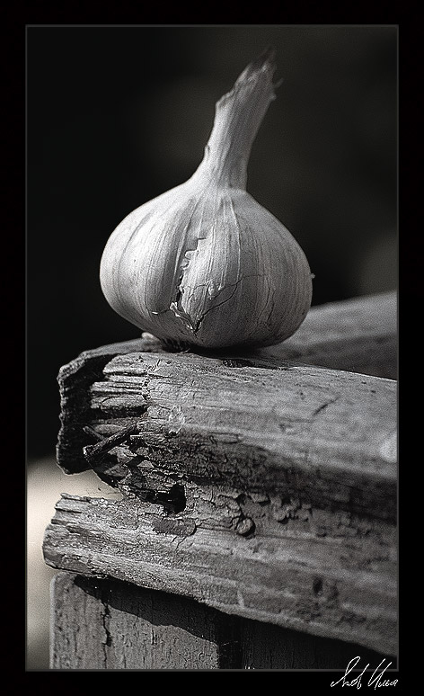 "фото ""Летняя веранда. Вечер"" метки: натюрморт, черно-белые,"