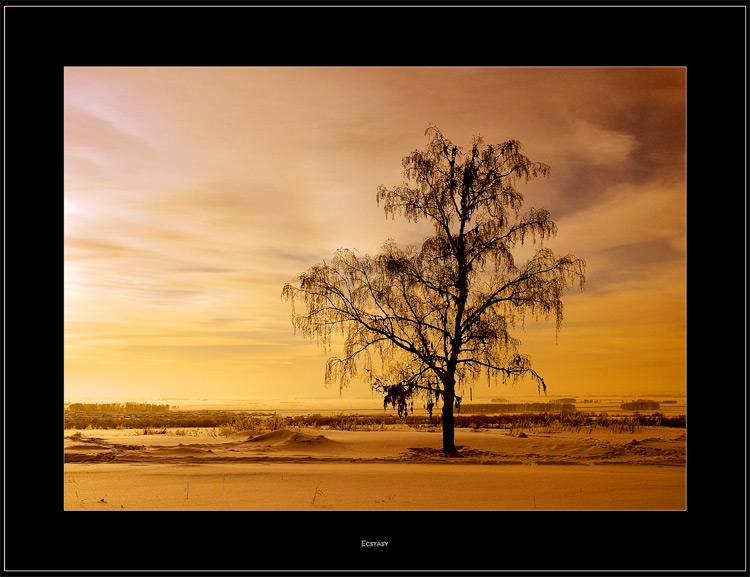 """фото """"Ecstasy"""" метки: пейзаж, зима, облака"""