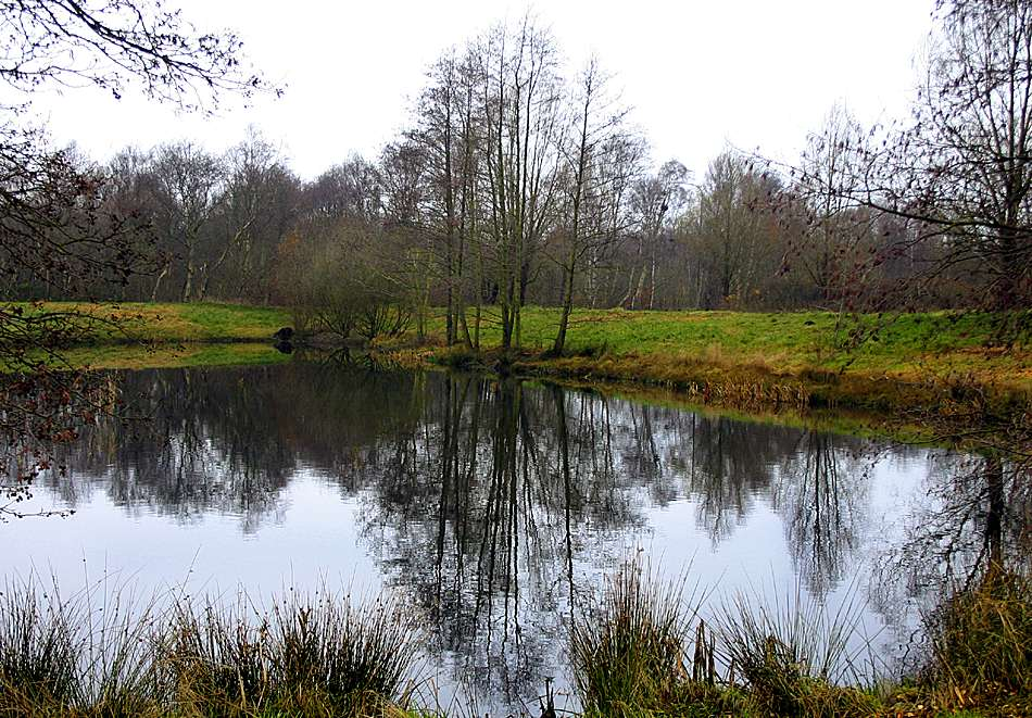 """photo """"Reflection"""" tags: landscape, water"""