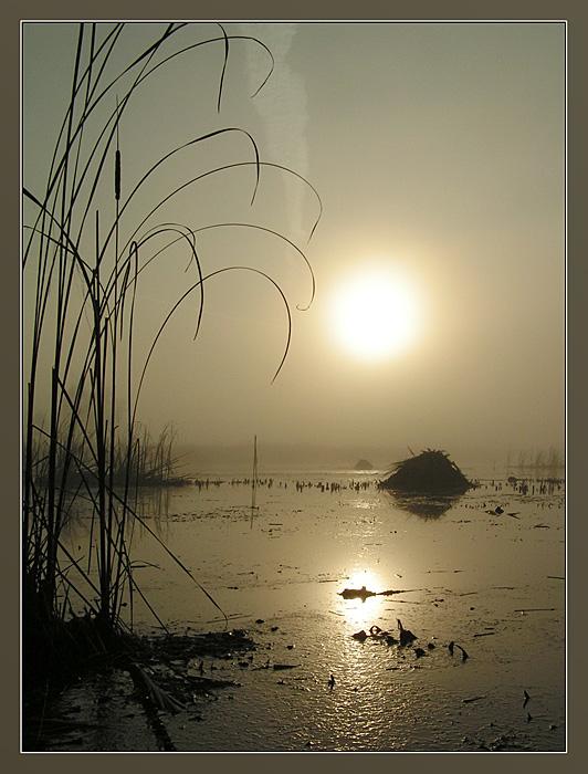 """фото """"Серебряное озеро"""" метки: пейзаж, вода, закат"""