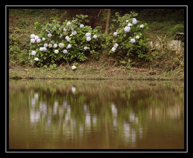 """фото """"A Lake"""" метки: пейзаж, путешествия, Южная Америка, вода"""