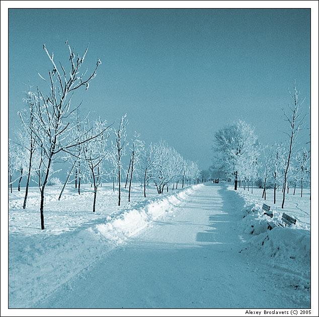 """фото """"Морозное утро"""" метки: пейзаж, природа, зима"""