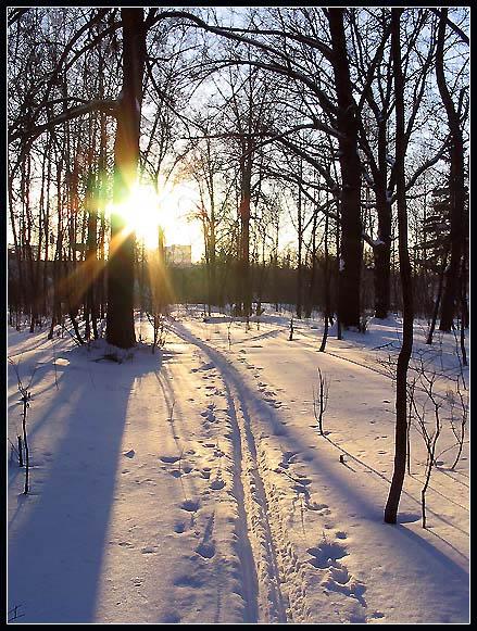 """фото """"Догнать солнце..."""" метки: пейзаж, зима"""