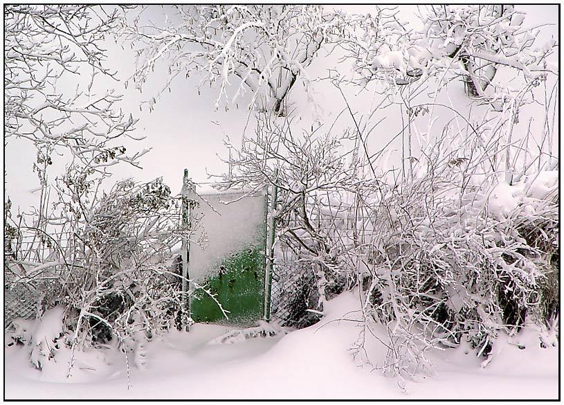 """фото """"The green door"""" метки: пейзаж, зима"""