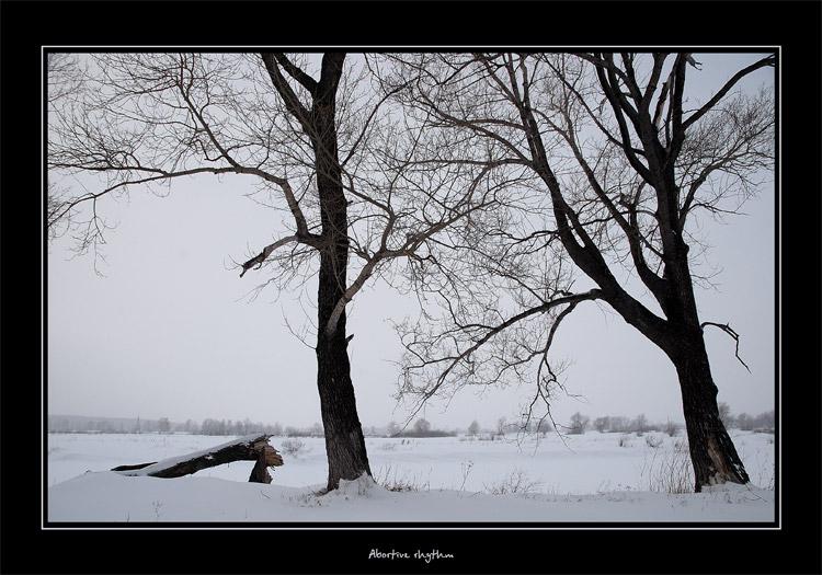 """фото """"Прерванный ритм"""" метки: разное, пейзаж, зима"""