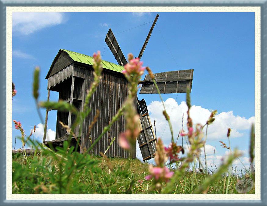 "фото ""Windless..."" метки: пейзаж, лето"