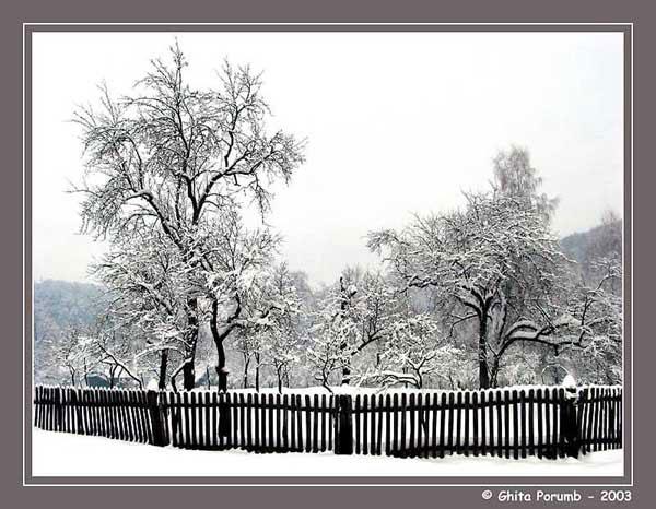 """фото """"Fence 3"""" метки: пейзаж, зима"""