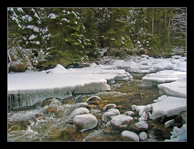 """фото """"Зимняя река"""" метки: пейзаж, вода, лес"""