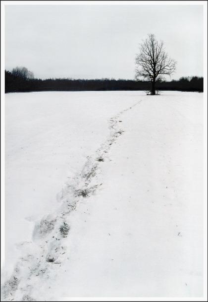 """фото """"иногда, я навещаю своего друга..."""" метки: пейзаж, зима"""