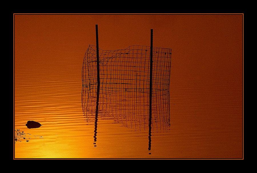 """фото """"Golden Morning"""" метки: пейзаж, вода, закат"""