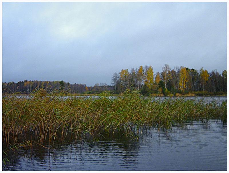 """фото """"Осенний день (5)"""" метки: пейзаж, осень"""