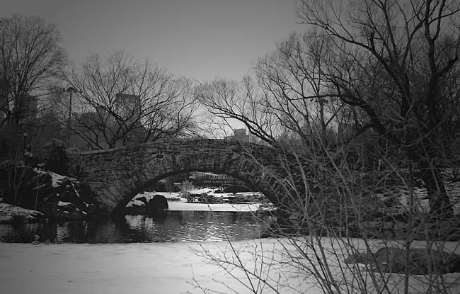 "фото """"Nightfall at Central Park"""" метки: разное,"