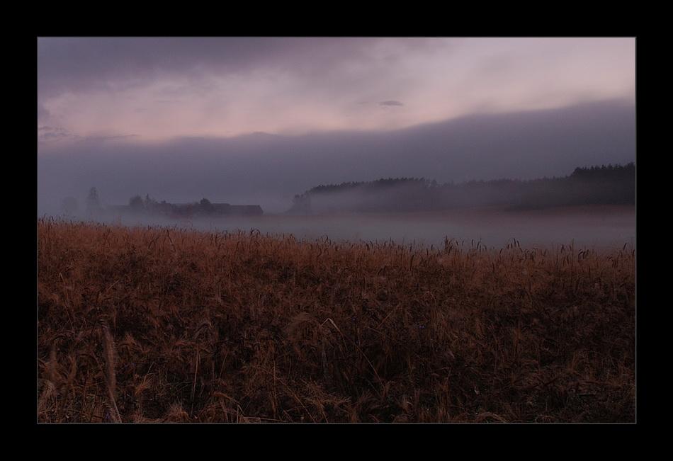 """фото """"forgotten field"""" метки: пейзаж, осень"""