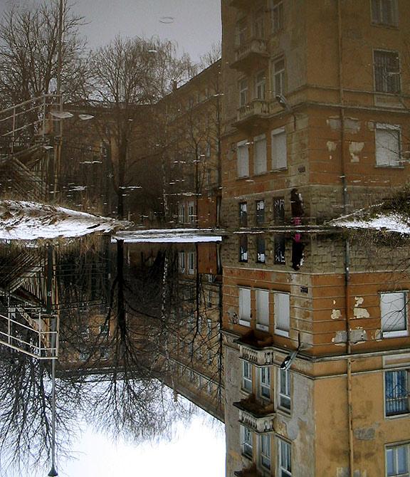 "фото ""the world of the puddle"" метки: разное,"