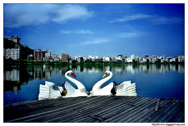 "фото ""Swan Lake"" метки: пейзаж, архитектура, вода"