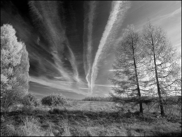 """фото """"Дороги 2"""" метки: природа, пейзаж, осень"""