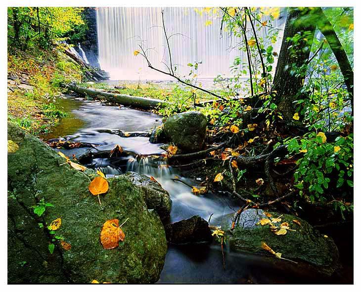 """фото """"fall"""" метки: пейзаж, вода, осень"""